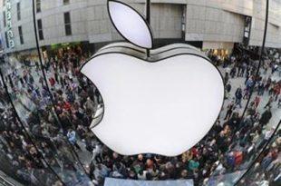 Fatturato di apple store
